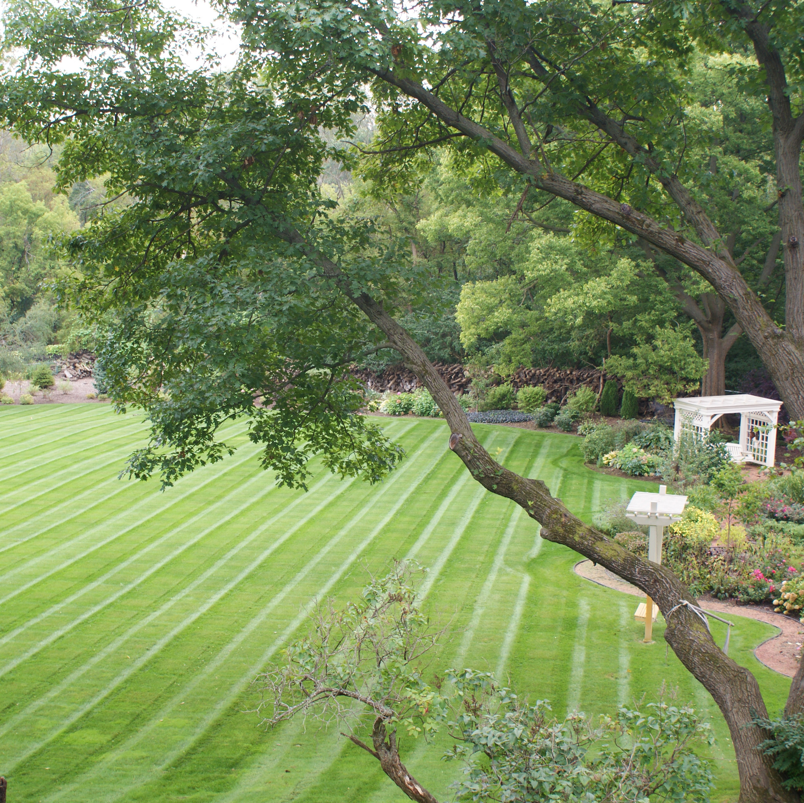 Landscaping Maintenance, Elmhurst IL