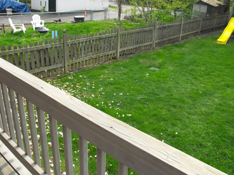 Before Lawn Over Deck